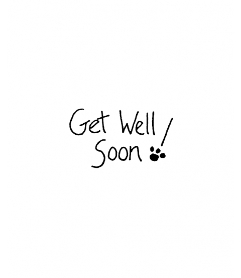 Janie Miller Get Well Wood Mount Stamp D3-49831C