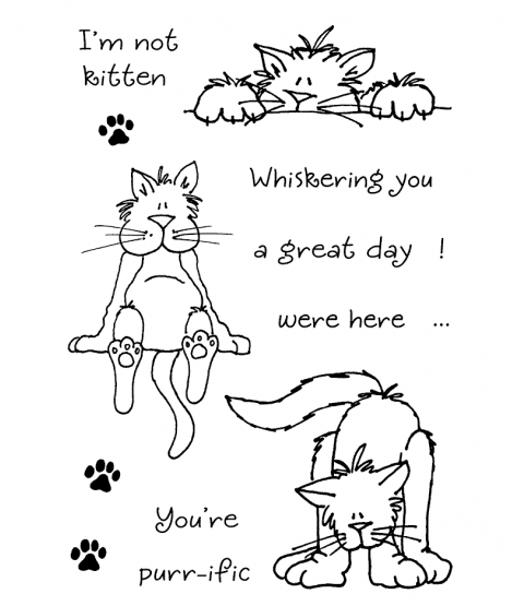 Janie Miller Cute Cats #4 Clear Stamp Set - 11075MC
