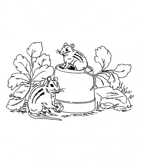 Nancy Baier Chipmunks Wood Mount Stamp M1-0541J