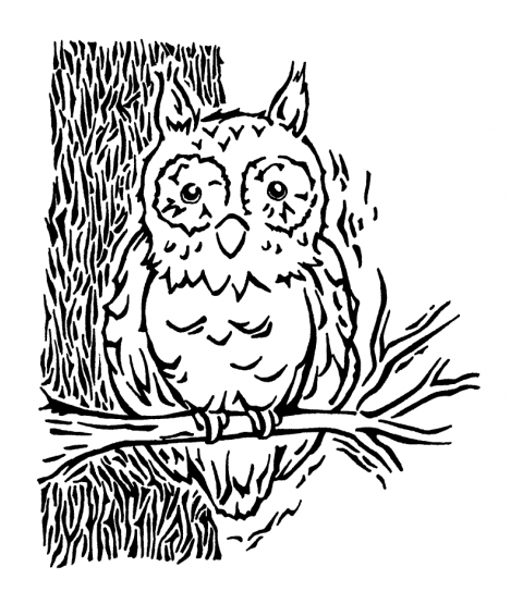Nancy Baier Owl In Tree Wood Mount Stamp K1-2267H