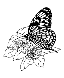 Butterfly on Flower Wood Mount Stamp M5-0556J