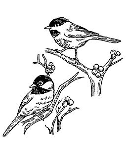 Chickadees Wood Mount Stamp P1-8743K