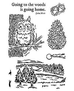 Nancy Baier Forest & Pines Clear Stamp Set 11197MC