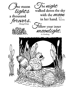 Nancy Baier Moonlight Raccoon Clear Stamp Set 11111MC