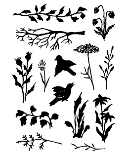 Wildflowers & Weeds Clear Stamp Set 11201MC